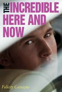 the incredible here and now - felicity castagna