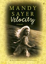 velocity - mandy sayer
