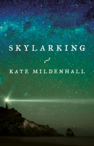 Mildenhall Skylarking Novel