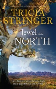 Jewel in the North Tricia Stringer