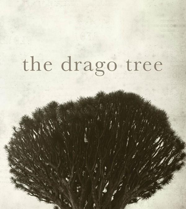 The Drago Tree Isobel Blackthorn